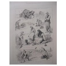 'Sketches Among The Irish Peasantry: Winter Fuel'  - The London Illustrated News Feb. 26 1881