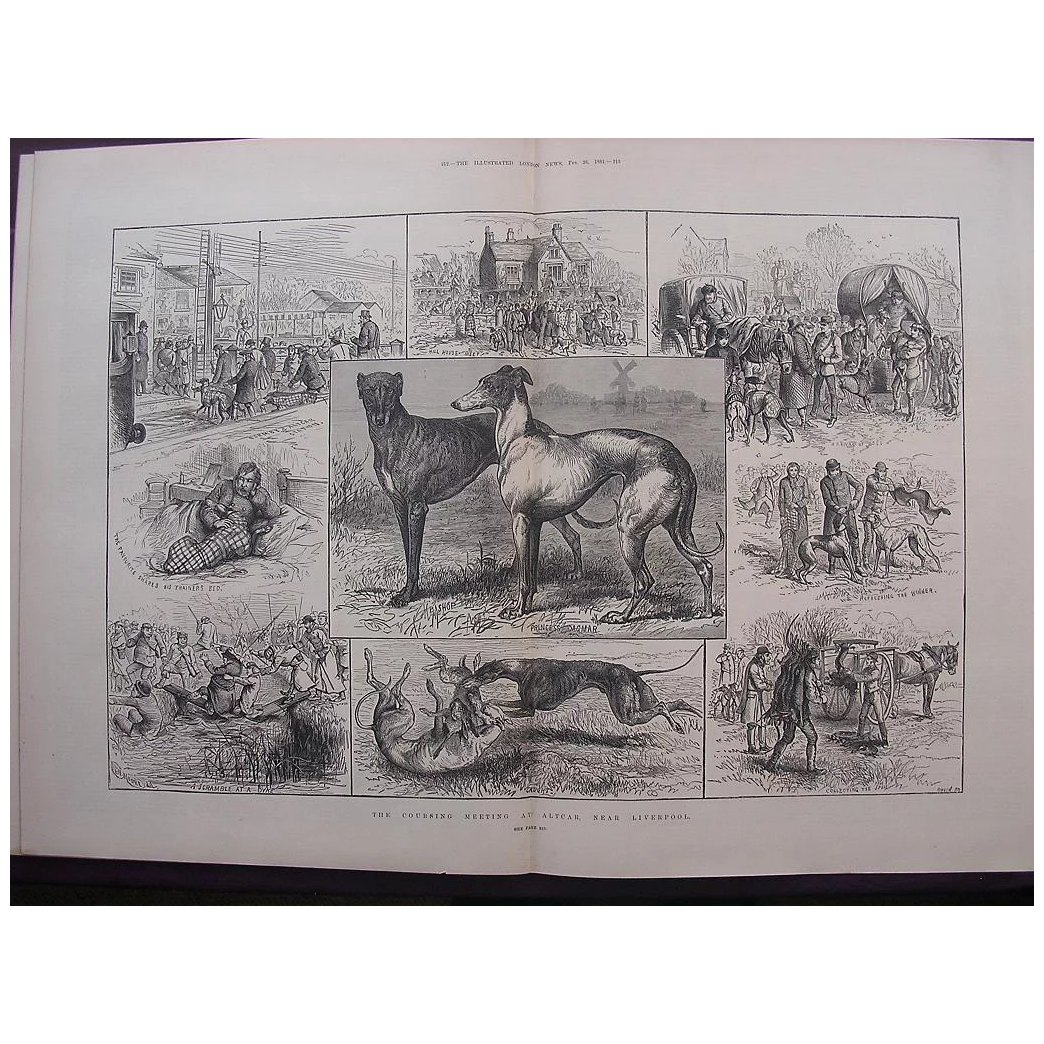 ' The Coursing Meeting At Altcar, Near Liverpool' - The Illustrated London News Feb. 26 1881