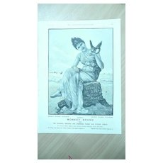 BROOKE'S Monkey Brand Full Page From The London Illustrated News 1895 1892