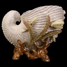 1800's Staffordshire Longton Moore Bros Cactus Flower Porcelain Conch Shell Vase