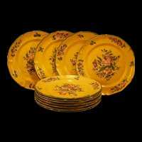 10 Vintage Hand Painted Villeroy & Boch Dinner Plates Strassburg Floral Discontinued