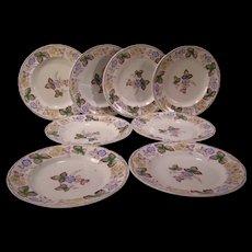 Set-8 1840's Staffordshire Ironstone Plates MULBERRY Blossom Morley Transferware