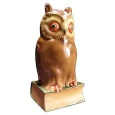 1930's German Porcelain Great Horned Barn Owl Figure Statue Lamp Sculpture Light