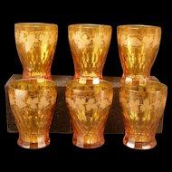 Set 6~ Antique Honey Amber Topaz Tumbler Glass CUT Etch Bohemian Barware Whiskey