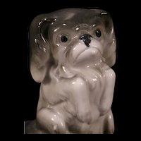 "20's German Porcelain Bone China ""BEGGING"" Dog Figure Statue Sculpture Pekingese Figurine"