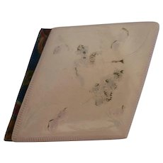 1904 Asymmetrical Autograph Book  Celluloid Raised Flower Cover