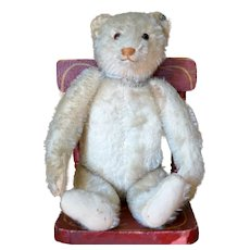Charming Pre World War I White Steiff Bear