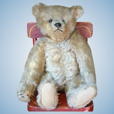 Lovable Gold Mohair Pre-World War I Teddy