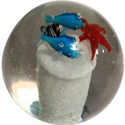 Paperweight With Two Dolphins, A Starfish And Coral On a Pedestal