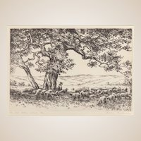 """HANS KLEIBER  (German/American 1887 - 1967) - Artist Signed and Titled Etching """"The Old Cotton Wood Tree"""""""