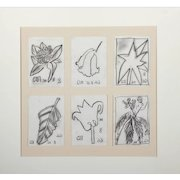 JOGEN CHOWDHURY (Indian b. 1939) - Six Original Botanlical Drawings Signed/Dated, With Letters Of Authenticity