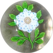 Very Fine Antique White Wheatflower With Blue Spots Paperweight.