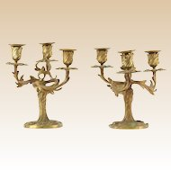 PAIR of 19th Century French Gilt Bronze Three Arm Candelabra, With Ornate Rococo Foliage Motif to Arms and Stems.