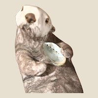 Otter With Clam Shell - Simply Adorable!