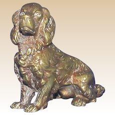 Bronze Male Dog (Spaniel,  Setter or Retriever), Looking For You!