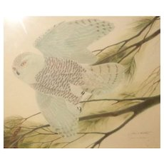 "JOHN RUTHVEN (American,  1924 -) - ""Flying Snowy Owl"" - Signed/Numbered Limited Edition  From LARRY HAGMAN'S Estate -"
