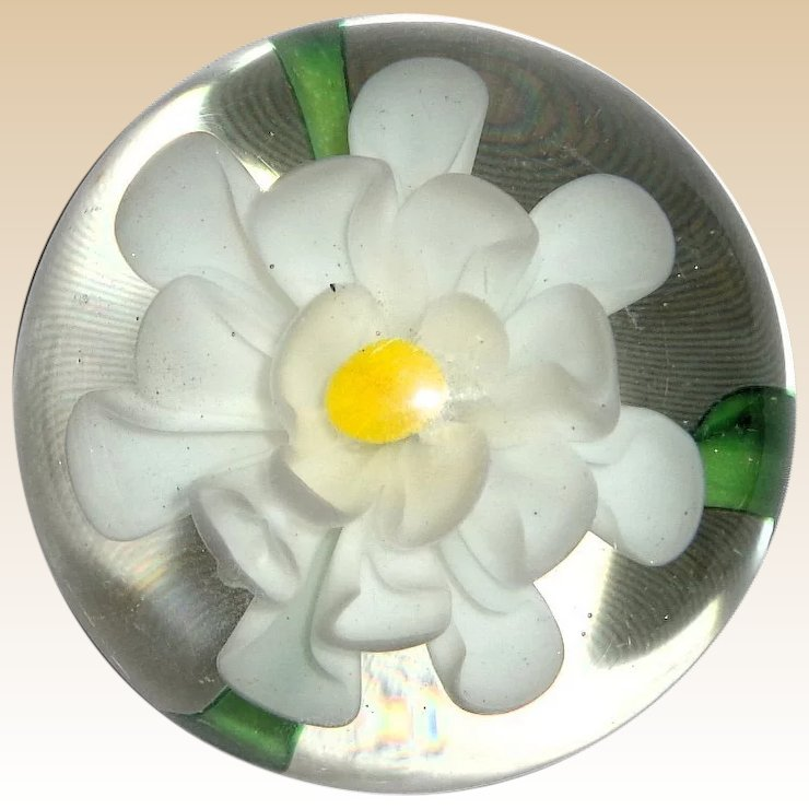 Art glass paperweight with blossoming white flower yellow center art glass paperweight with blossoming white flower yellow center on green leaves mightylinksfo Images