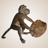 Vienna Bronze Monkey With Walnut Basket, Signed, Circa 1890/1910