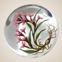 """CHRIS BUZZINI - Glass Art """"Star"""" One-Of-One """"Dame's Rocket"""" Paperweight"""