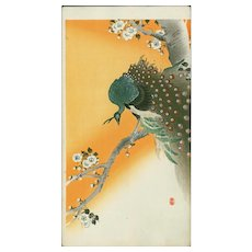 Ohara Koson - Peacock on Flowering Cherry Japanese Woodblock Print  - RARE