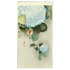 Ohara Koson - Sparrow on Hortensia - Japanese Woodblock Print (Woodcut)