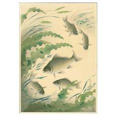 Ohno Bakufu - Crucian Carp (Funa) - Rare Japanese Woodblock Print (Woodcut)