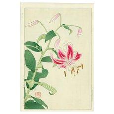Shodo Kawarazaki - Stargazer Lily - First Edition Japanese Woodblock Print (Woodcut)