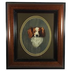 English Cavalier King Spaniel Dog Framed Oil Painting
