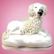 C.1860-1880 English Staffordshire Figurine Poodle