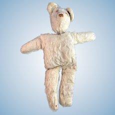 Comfort Bear