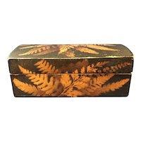 English Fern Ware Box, C. 1850-1900