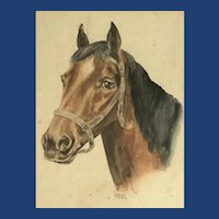 Victorian Watercolor of a Horse