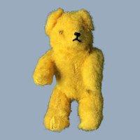 Marigold Bear