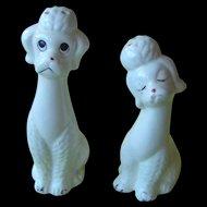 Vintage White Poodle Dog salt and pepper shakers