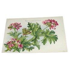 Vintage Postcard California Flowers