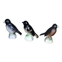 Advertising Premiums from Tender Leaf Tea's Canadian Birds series