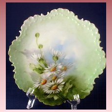 Antique Rosenthal Hand Painted Daisies Cabinet Plate Monbijou ~ Bavaria 1896-1907