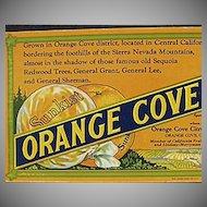 Vintage Sunkist Advertising - Old Ink Blotter - Orange Cove Fruits