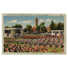 Vintage Postcard - Old Souvenir Postcard of Exposition Park University of Southern California