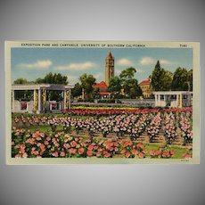 Vintage Postcard - Old Souvenir Postcard of Exposition Park University of Southern California