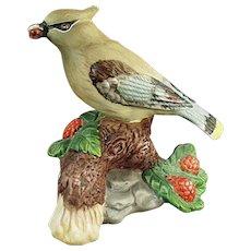 Vintage Porcelain Bisque Figurine - Old Cedar Waxwing Bird - Very Pretty