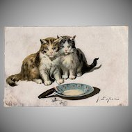 Vintage Postcard - Kittens with Cigar - 1910 Jules LeRoy
