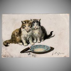 Vintage Postcard - Kittens with Cigar - 1910 Jules LeRoy