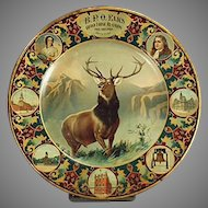Vintage Elks Grand Lodge Lithographed Tin Plate - 1907