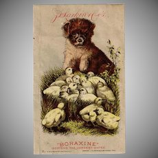 Vintage Advertising Trade Card - Larkin Company - Puppy and Baby Chicks