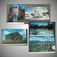 Five Vintage Souvenir Postcards from Idaho