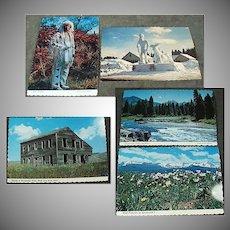 Five Vintage Souvenir Postcards from Idaho