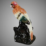 Colorful Vintage Pottery Flower Frog - Parrot Like Bird Figure