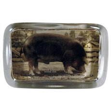 Vintage Glass Advertising Paperweight with Waterloo Royal Pathfinder Duroc Pig