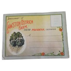 Vintage So. Pasadena Cawston Ostrich Farm Advertising Postcard Mailer